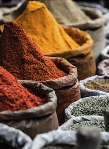 kulinarische weltreise ? afrikas küche von nord nach süd - worlds ... - Nordafrikanische Küche